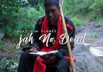 Music Review: Platinum Flames – Jah No Dead